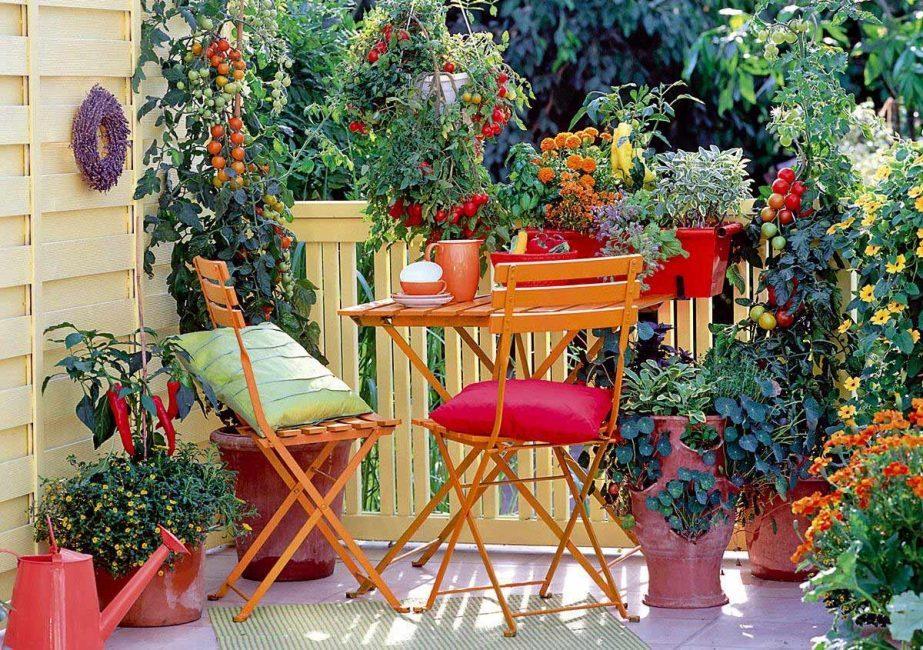 malenkij-balkon-304-923x650-3382132