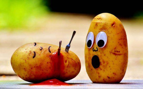 potatoes-ketchup-murder-blood-111130-e1482315551487-5400673